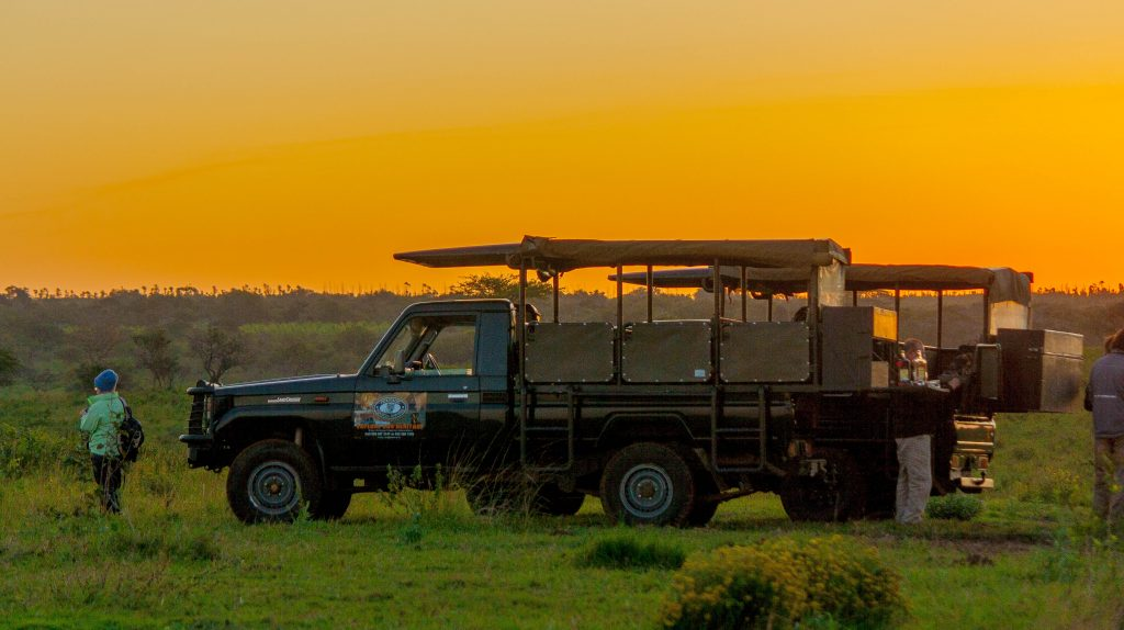 hluhluwe imfolozi park day safari options