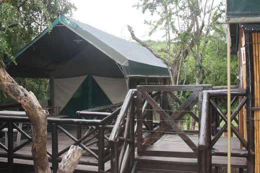 2 bed Safari Tent