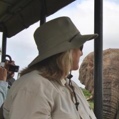 Hluhluwe Elephants Close Up while on Safari