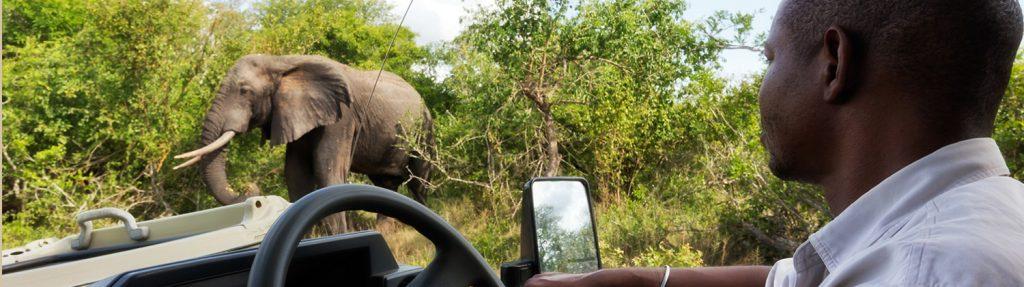 tembe safari