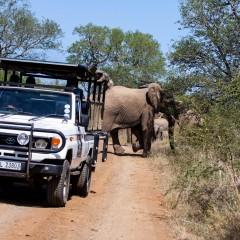 Day Tours Durban