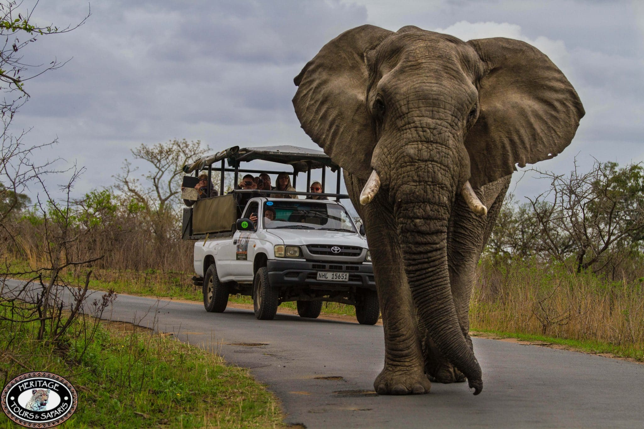 Hluhluwe Game Reserve KwaZulu Natal