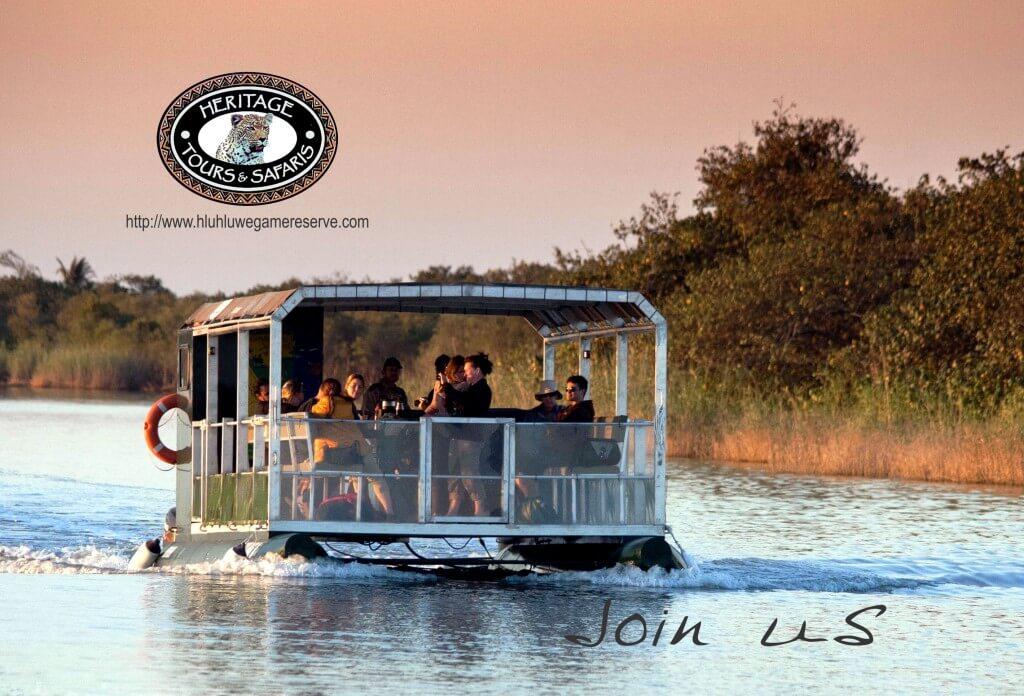 hippo & croc boat safari