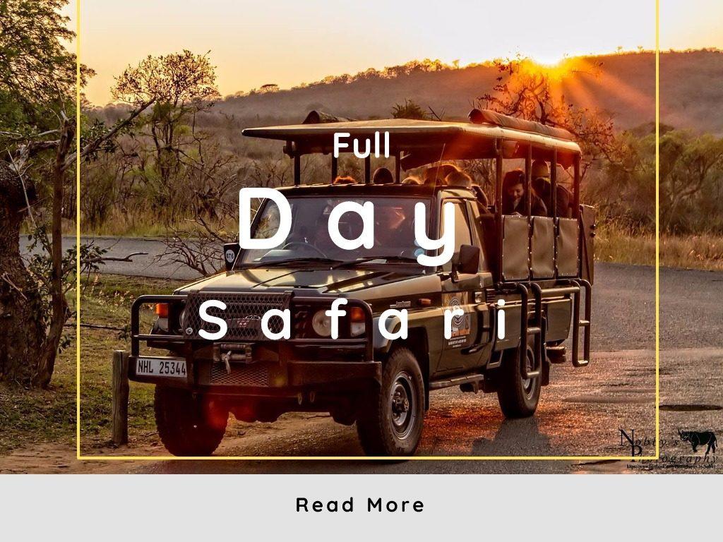 hluhluwe imfolozi park full day big 5 safari