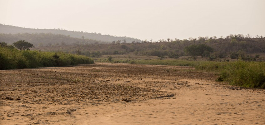 Dry and Humid Conditions Hluhluwe
