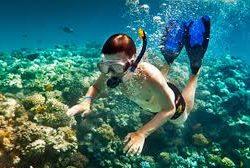 snorkeling cape vidal half day