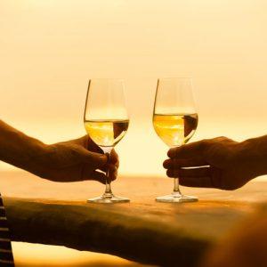 Stellenbosch Wine Tasting Tours