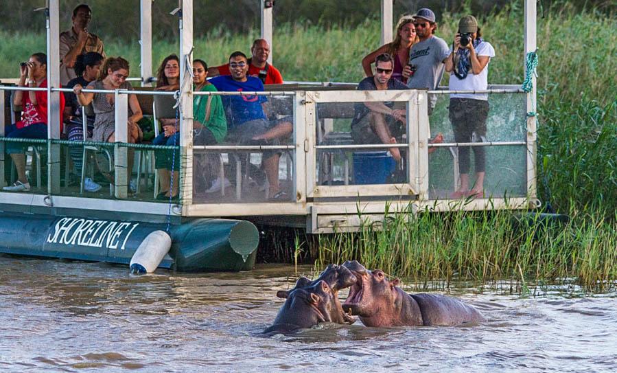 half day safari south africa kwazulu natal