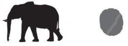 elephant and print