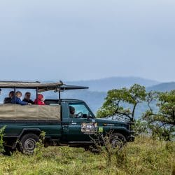 7 night safari package south africa
