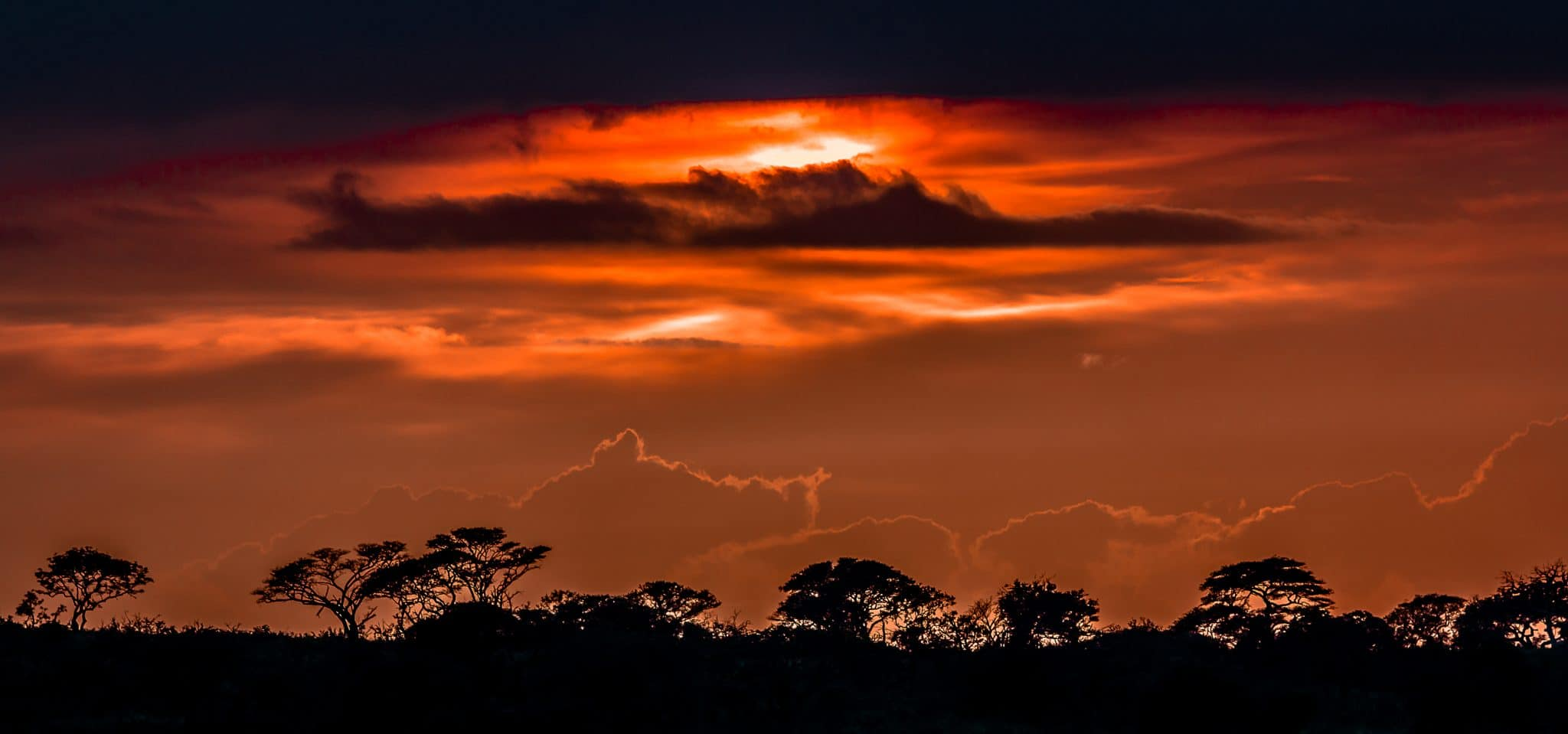 big 5 safari south africa zululand natal