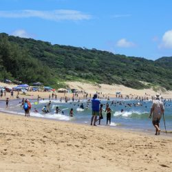 st lucia south africa to isimangaliso wetland park cape vidal