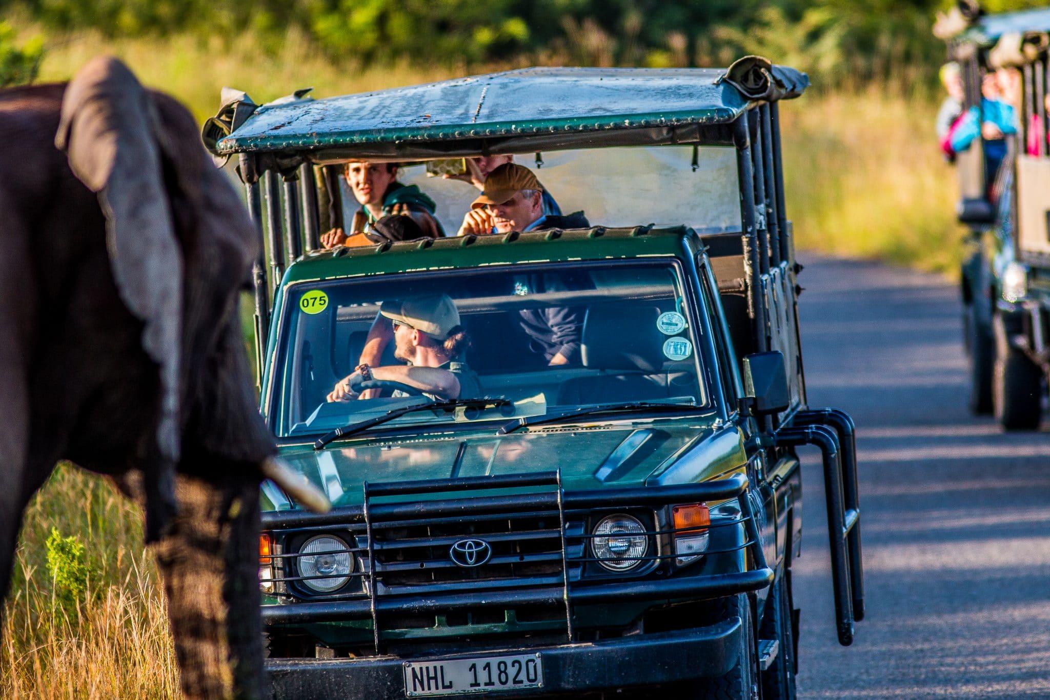 hluhluwe umfolozi safaris