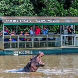 st lucia activities and safaris